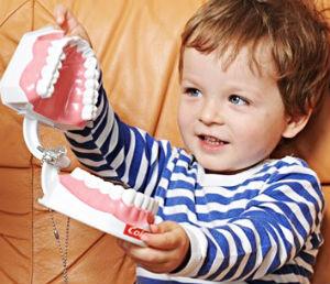 Замена молочных зубов постоянными.